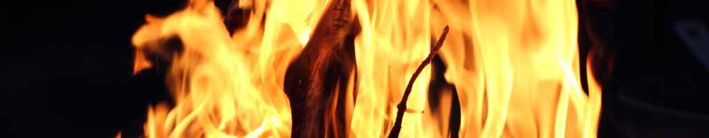 Exode 3 - Le buisson ardent, Dieu se révèle