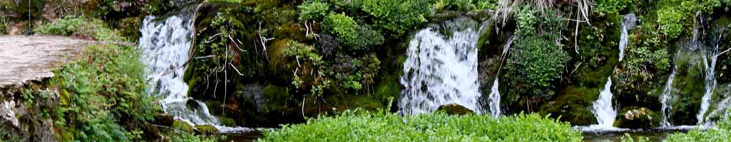 oasis de paix - Neve Shalom
