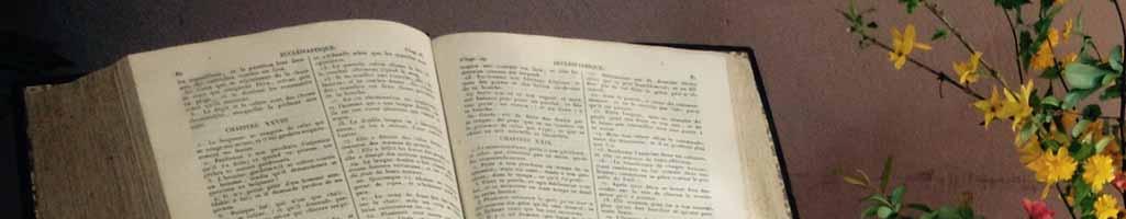 Mieux comprendre la Bible